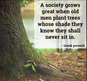 Greek proverb socitey grows...